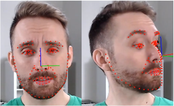 Face landmark tracking in action