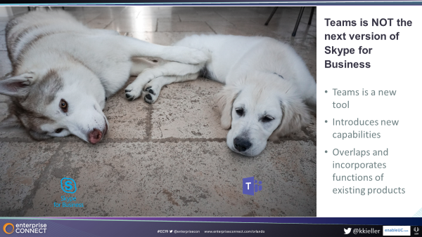 Two dogs, to illustrate difference between Microsoft Teams & Skype for Business