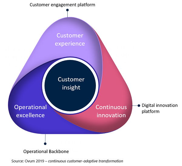 Ovum schematic for continuous customer-adaptive transformation