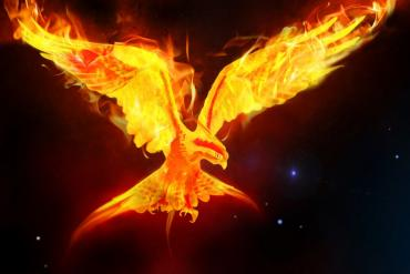 Illustration of a phoenix rising