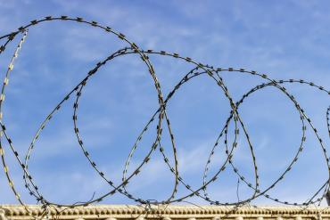 Photo of barbed wire along trench line