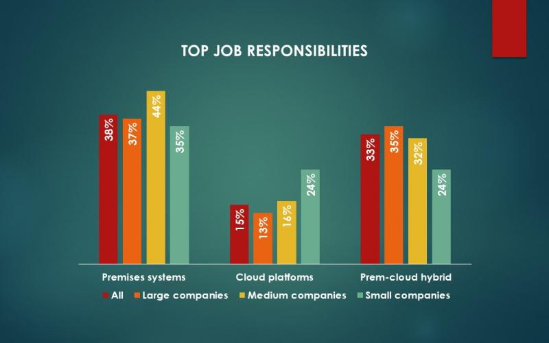 Chart of top job responsibilities